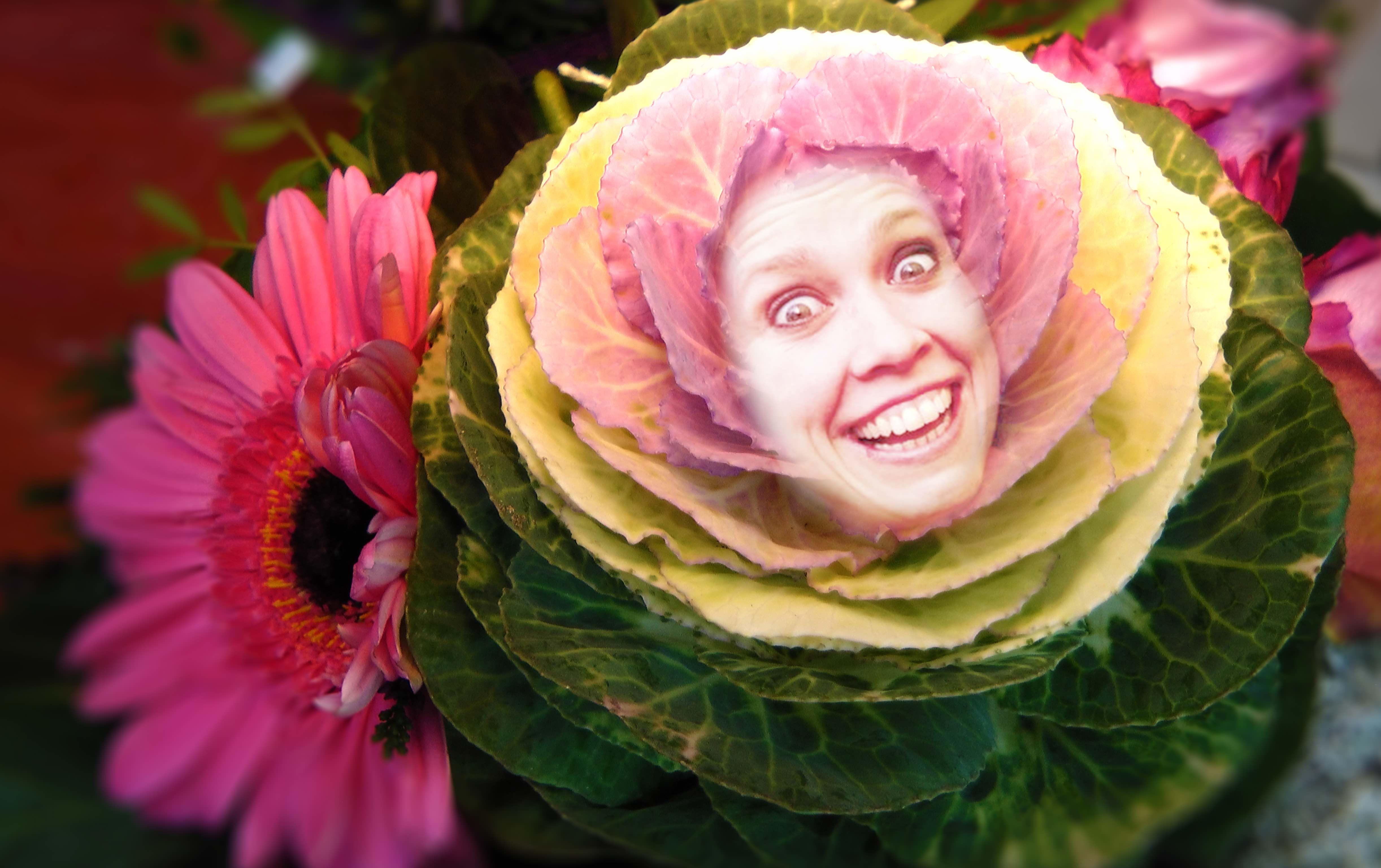 Blume_1